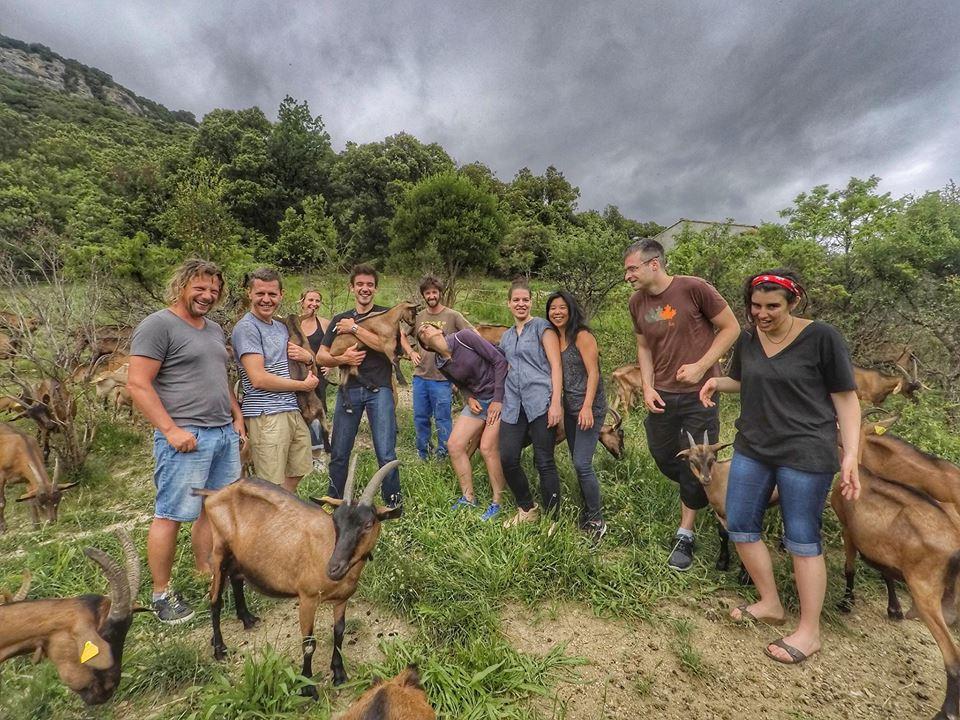 Visite de la chevrerie de la Buege